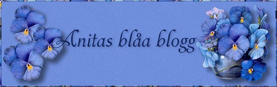 Anitas blåa blogg